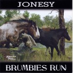 Brumbies Run